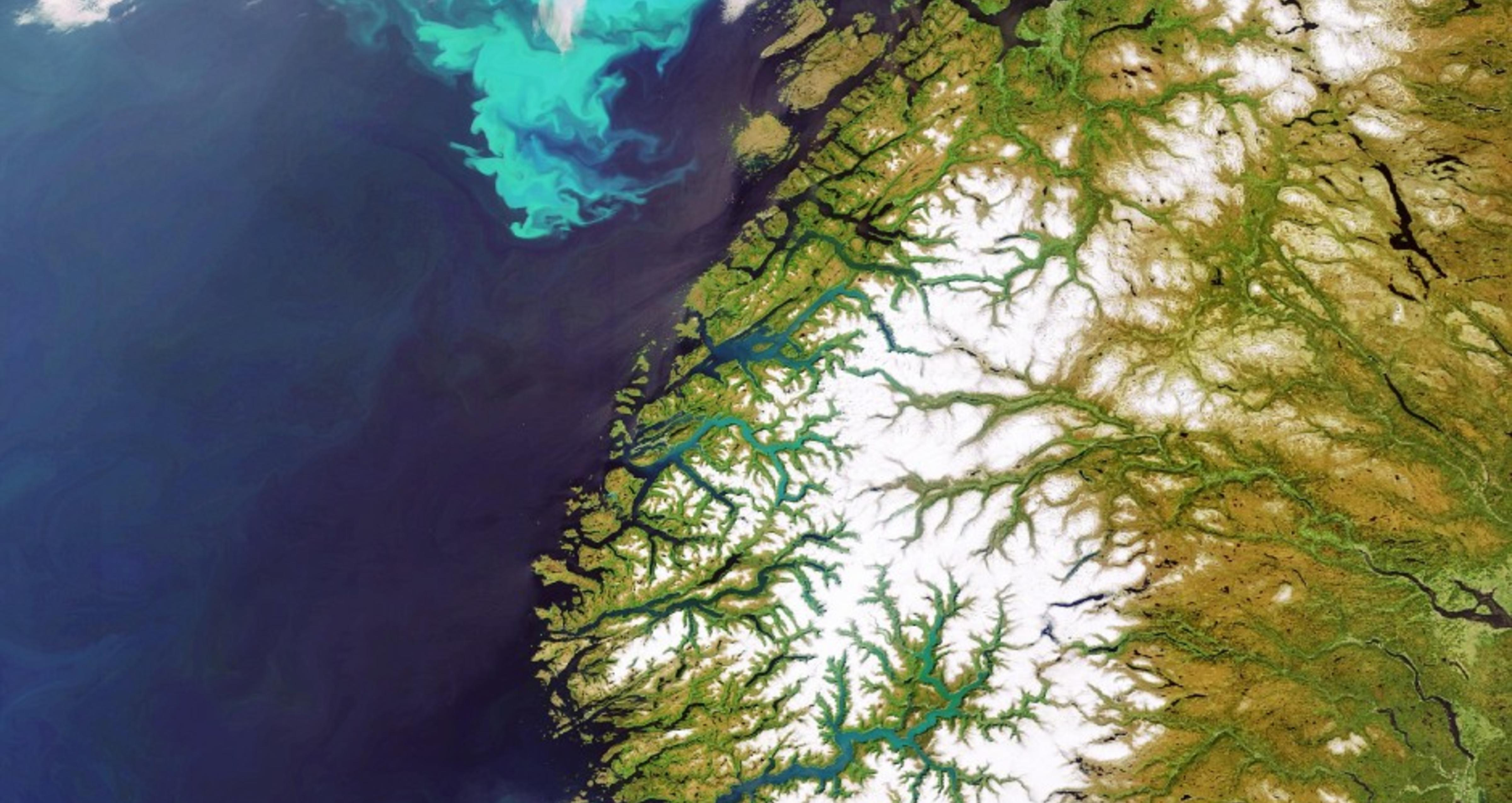 Planktonblomstring i Atlanteren