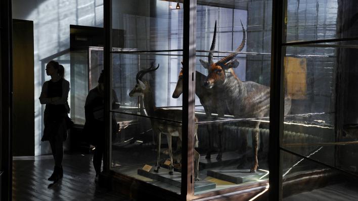 Bilde fra utstillingen