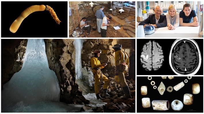 collage av forskningsgjennombrudd
