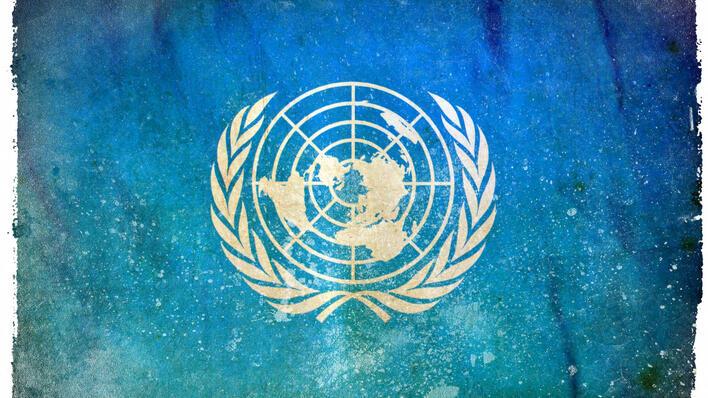 FN flagg