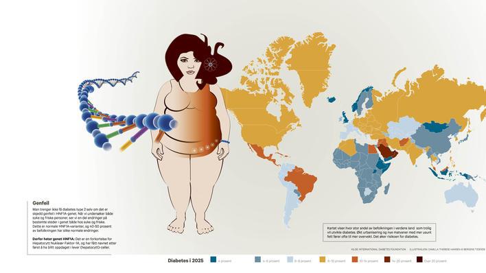 Kartet viser antatt spredning av diabetes i 2025 med utgangspunkt i dagens utvikling.