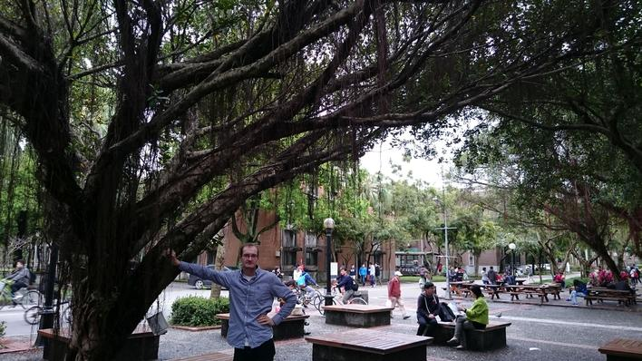 Man standing under a banyan tree
