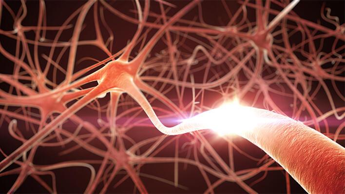 Hukommelsesproteinet Arc er involvert i ei rekkje sjukdomar knytt til kognitiv svikt, inkludert Alzheimer og nevropsykiatriske lidingar.