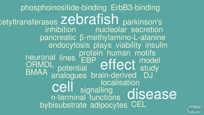 A wordle with words from master theses submitted autumn 2015
