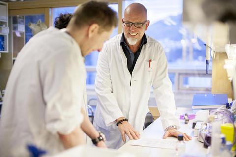 Technicians busy in a laboratory.