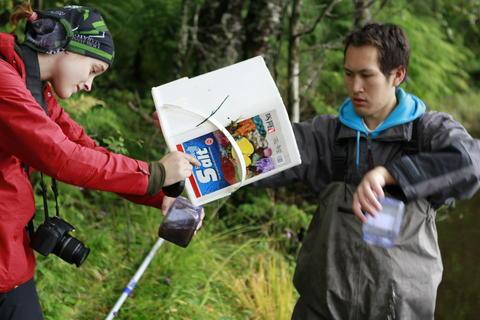 Studenter fra Institutt for biologi ved Universitetet i Bergen ute i felten.
