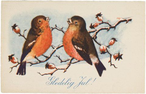 Julekort med to fugler