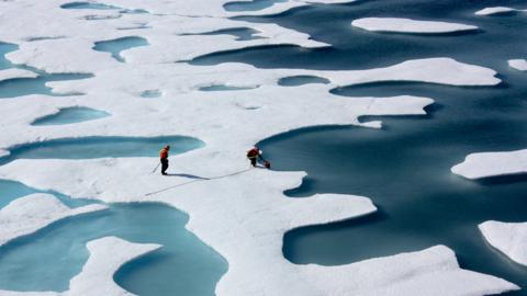 Isflak på havet