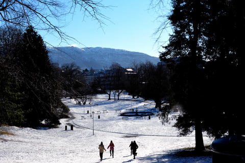 BRRRRRR: Kulden til tross, Nygårdsparken like ved målestasjonen i Bergen har noen besøkende.