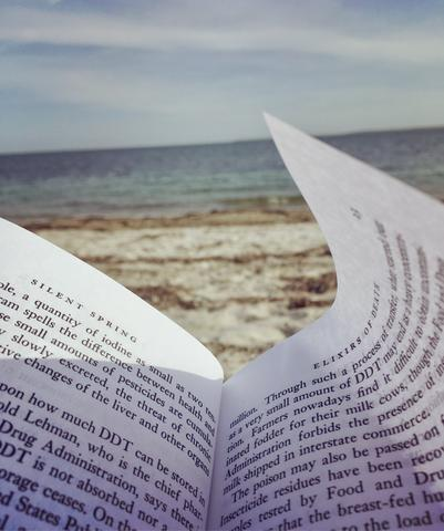 """Reading """"Silent Spring"""" by the Atlantic Ocean"""