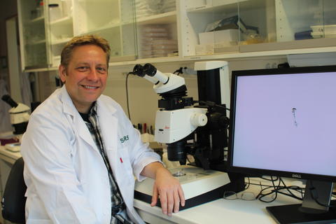 Andreas Hejnol, researcher at the SARS Centre