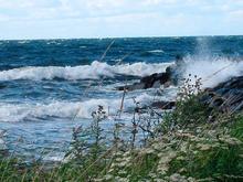 Bachelorprogram i meteorologi og oseanografi