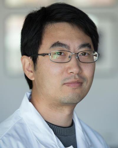 Xiang Wang's picture
