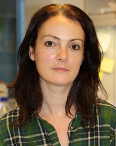 Elise Norheim de Faveri's picture