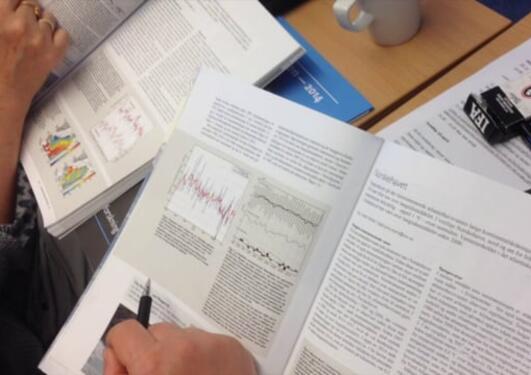 Lese og forstå forskningsdata
