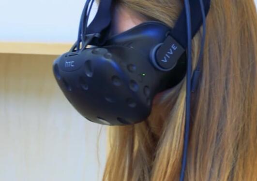 Virtuelt feltarbeid