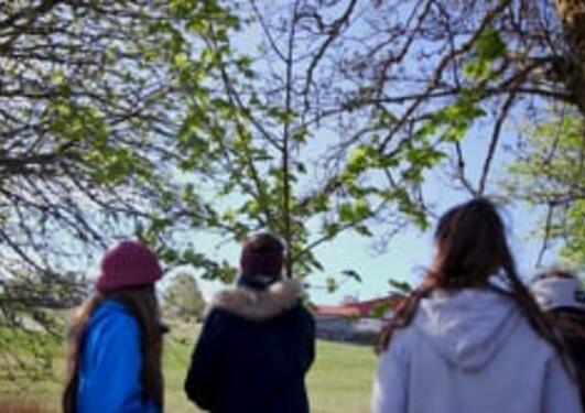 Undervisning i Botanisk hage - Fremmede arter
