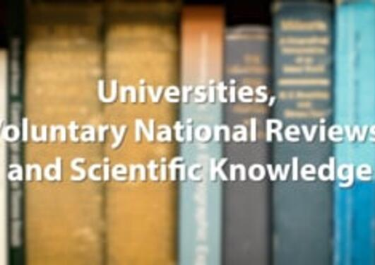 Universities, Voluntary National Reviews, and Scientific Knowledge