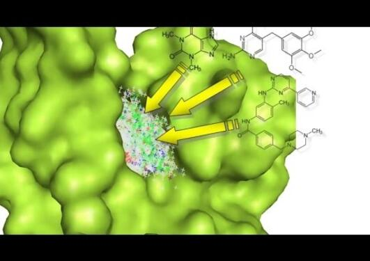 Webinar: structure-based design of riboswitch and kinase ligands