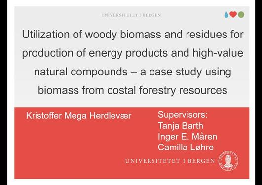Utilization of woody biomass and residues for production of energy products and natural compounds