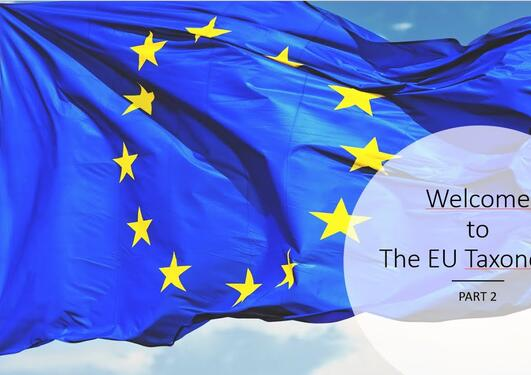 Part 2 The EU Taxonomy