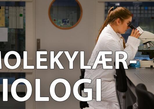 Molekylærbiologi: Fra klima til sykehus