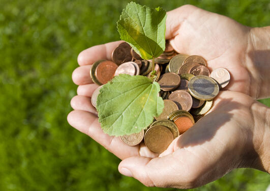 Penger holdt i hånd med bladet