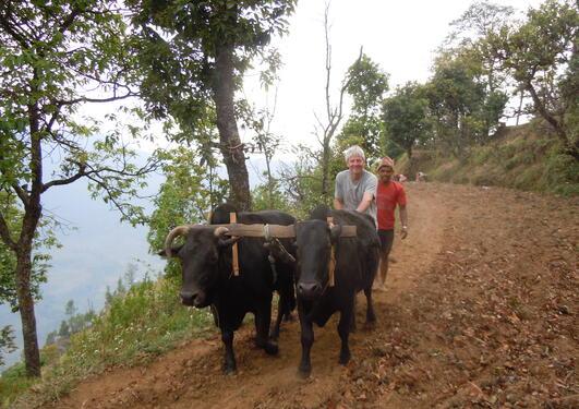Jordbruk i Nepal.