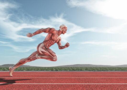 Løpende person med grafiske muskler på løpebane