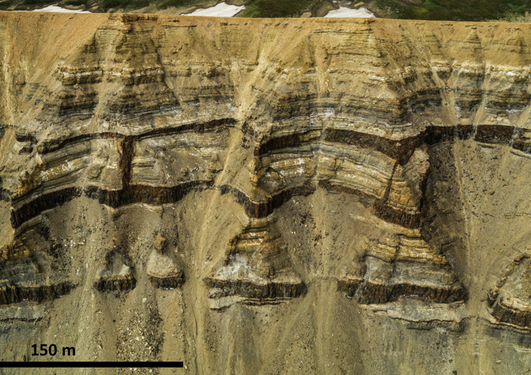Igneous intrusions (dark brown) intruded into Jurassic sedimentary rocks (beige to black) just after the opening of the Norwegian-Grenland Sea.