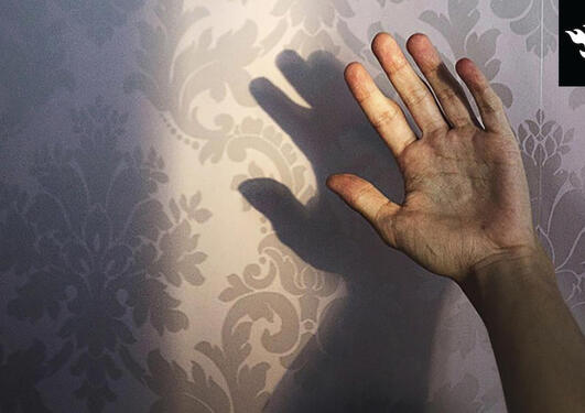 A hand in front of a wallpaper background
