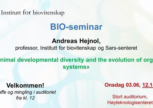 Poster image regarding the seminar
