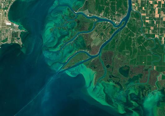 Satellite view of algae bloom
