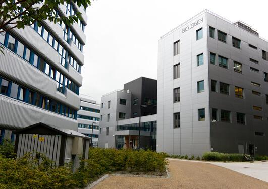 Institutt for biovitenskap