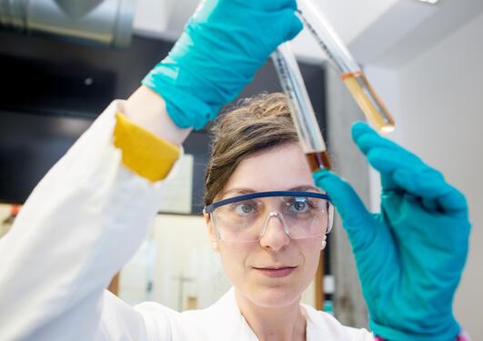 Bilde fra lab-miljø
