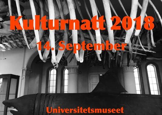 Kulturnatt 2018