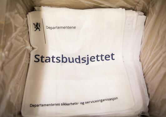 Bærenett til statsbudsjettet