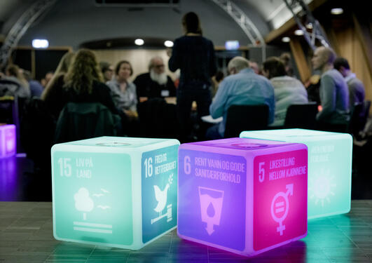 Photo: Interactive workshop at SDG Conference Bergen 2020.
