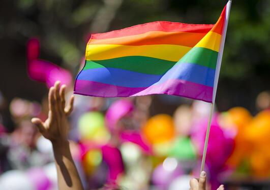 Pride, Regnbuedagene, UiB