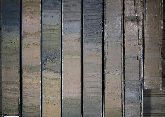 Anne_sediment-core