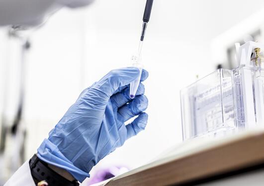 forskningsarbeid på laboratorium