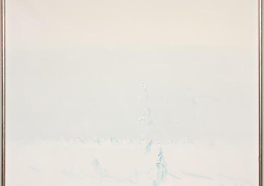 Kåre Tveter: Vinterlys