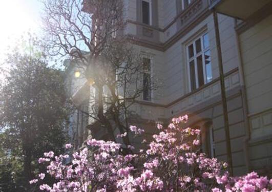Bilde av huset der instituttet har sine lokaler.