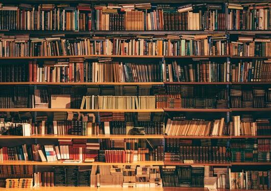 Picture of bookshelf.