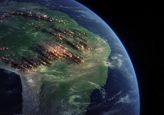 Amazon from space