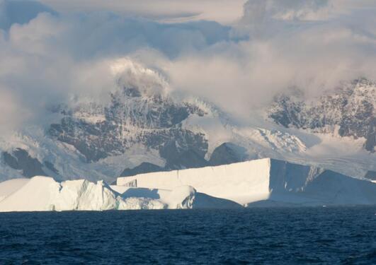 Antartic summer