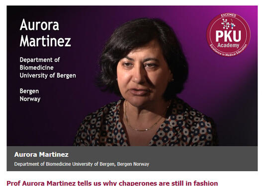 Prof Aurora Martinez tells us why chaperones are still in fashion - picture from a video by the PKU Academy