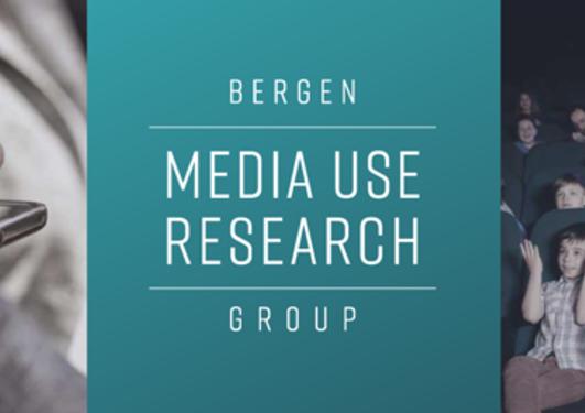 Mediebruksgruppen