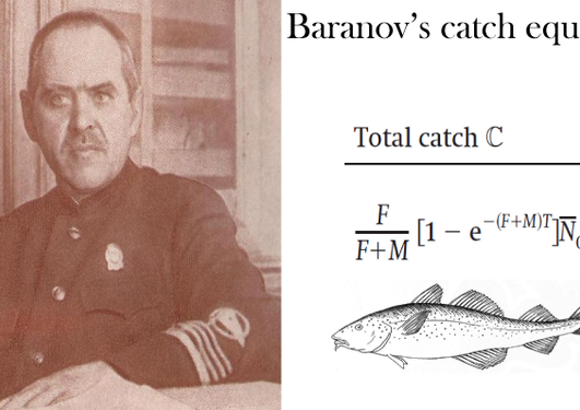 Portrait of Fedor Baranov and his catch equation