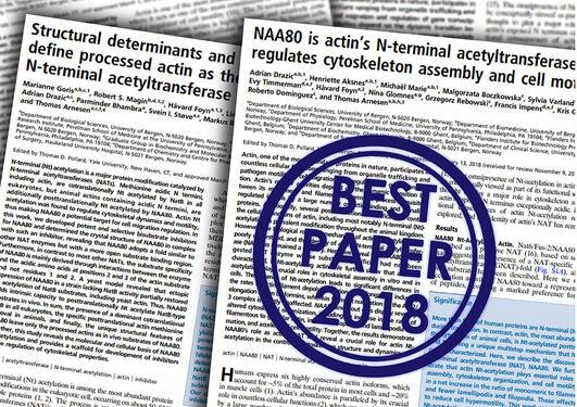 To forskningsartikkler stemplet med Best paper 2018